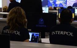 Interpol: Theo dõi dòng tiền để chống buôn lậu ma túy