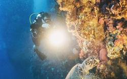Khám phá 7 nơi lặn biển tuyệt vời tại châu Á