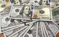 Chuyên gia Nguyễn Trí Hiếu: Tỷ giá đô la Mỹ sẽ tiếp tục tăng nhẹ