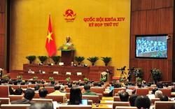 Chính phủ sẽ báo cáo Quốc hội việc sử dụng, quản lý tài sản nhà nước