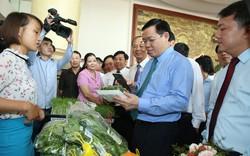 Phó Thủ tướng Vương Đình Huệ: Chất lượng quả vải cao, bán có lãi là nhờ vào cách làm bài bản
