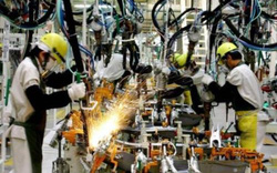 Xe ế, Toyota Thái Lan cắt giảm 800 lao động