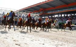 Bình Dương tổ chức đua ngựa, đua xe mừng Xuân Đinh Dậu