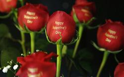 Người Mỹ có thể chi 2 tỷ USD mua hoa dịp Valentine