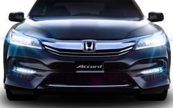 Honda Việt Nam thu hồi 1.335 xe để sửa chữa lỗi túi khí
