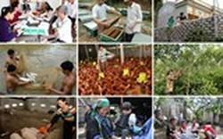 Xây dựng cơ sở dữ liệu quốc gia về an sinh xã hội