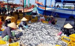 Gỡ vướng trong triển khai Nghị định 67 về chính sách hỗ trợ thủy sản