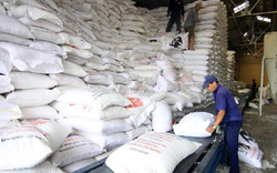 Hỗ trợ Thanh Hóa 50.790 tấn gạo