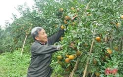 Phó Thủ tướng Trịnh Đình Dũng trả lời ĐBQH những bất cập liên quan đến tích tụ đất đai