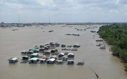 Thủ tướng yêu cầu ứng phó lũ lớn ở Đồng bằng sông Cửu Long và mưa lũ tại Bắc Bộ