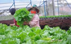 Thủ tướng yêu cầu tỉnh Lâm Đồng chú trọng phát triển du lịch