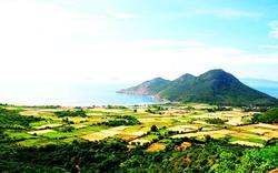 Khánh Hòa: Báo cáo công tác chuẩn bị Năm Du lịch quốc gia 2019