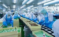 Thủ tướng chỉ đạo giải quyết những vướng mắc trong đầu tư phát triển KTXH của Nghệ An