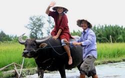 Đầu tư du lịch gắn với nông nghiệp chưa được quan tâm đúng mức