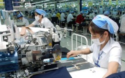 Doanh nghiệp nhỏ và vừa tại Việt Nam tự tin tăng trưởng doanh thu trong năm 2018
