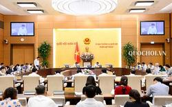 Thủ tướng đề nghị nghiên cứu, hoàn thiện một số dự án luật