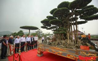 Lễ hội Sinh vật cảnh châu Á - Thái Bình Dương lần thứ 15: Dự kiến thu hút hơn 50 quốc gia tham dự