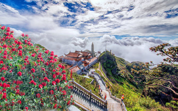"""""""Thêu hoa"""" lên đỉnh trời Hoàng Liên Sơn"""