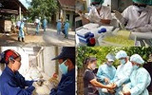 Vứt gia cầm mắc bệnh, chết ra đường bị phạt 6 triệu đồng