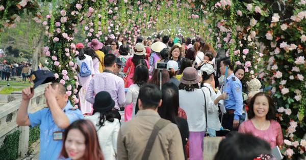 Lễ hội Hoa hồng 2019: Chiêm ngưỡng hơn 500 loài quý hiếm đến từ nhiều quốc gia