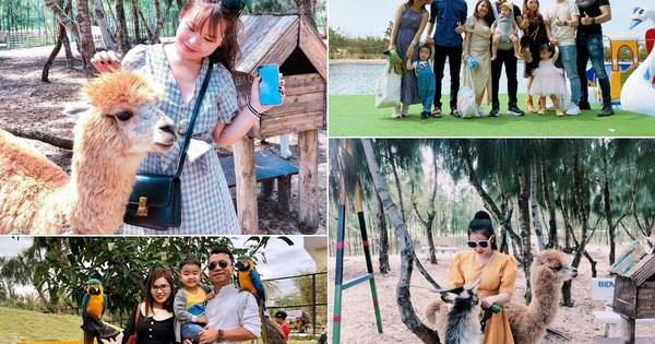 """FLC Zoo Safari Park Quy Nhơn - Điểm đến không thể bỏ lỡ trong hành trình khám phá """"xứ Nẫu"""""""