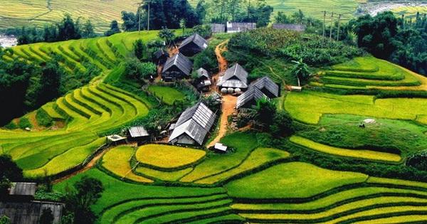 Phục hồi ngành công nghiệp không khói hậu Covid-19: Tiềm năng lớn từ 14 triệu người Việt đi du lịch nước ngoài mỗi năm