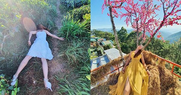 Đang buồn ngủ mà phải đi du lịch, thiếu nữ Huế có bộ ảnh để đời mang tên ''Buông lơi Đà Lạt'' hút sóng hơn 14.000 like
