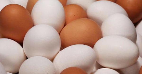 Vì sao trứng gà Mỹ bị đánh giá thấp và những sự thật đáng kinh ngạc đằng sau