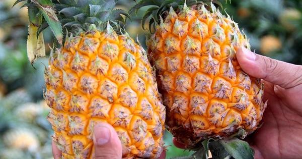 5 loại trái cây tuyệt đối không nên ăn khi bụng đói nếu không muốn bị viêm loét, xuất huyết dạ dày