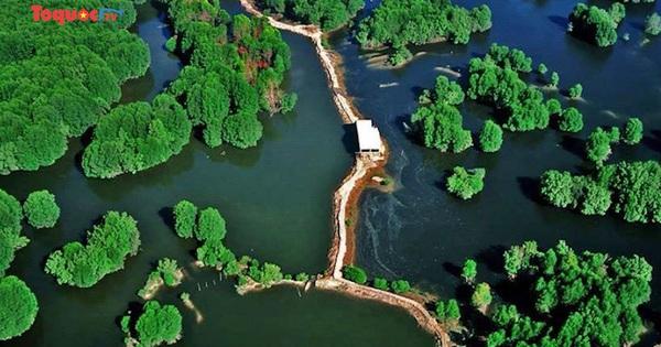 Hai khu dự trữ sinh quyển Việt Nam được UNESCO công nhận